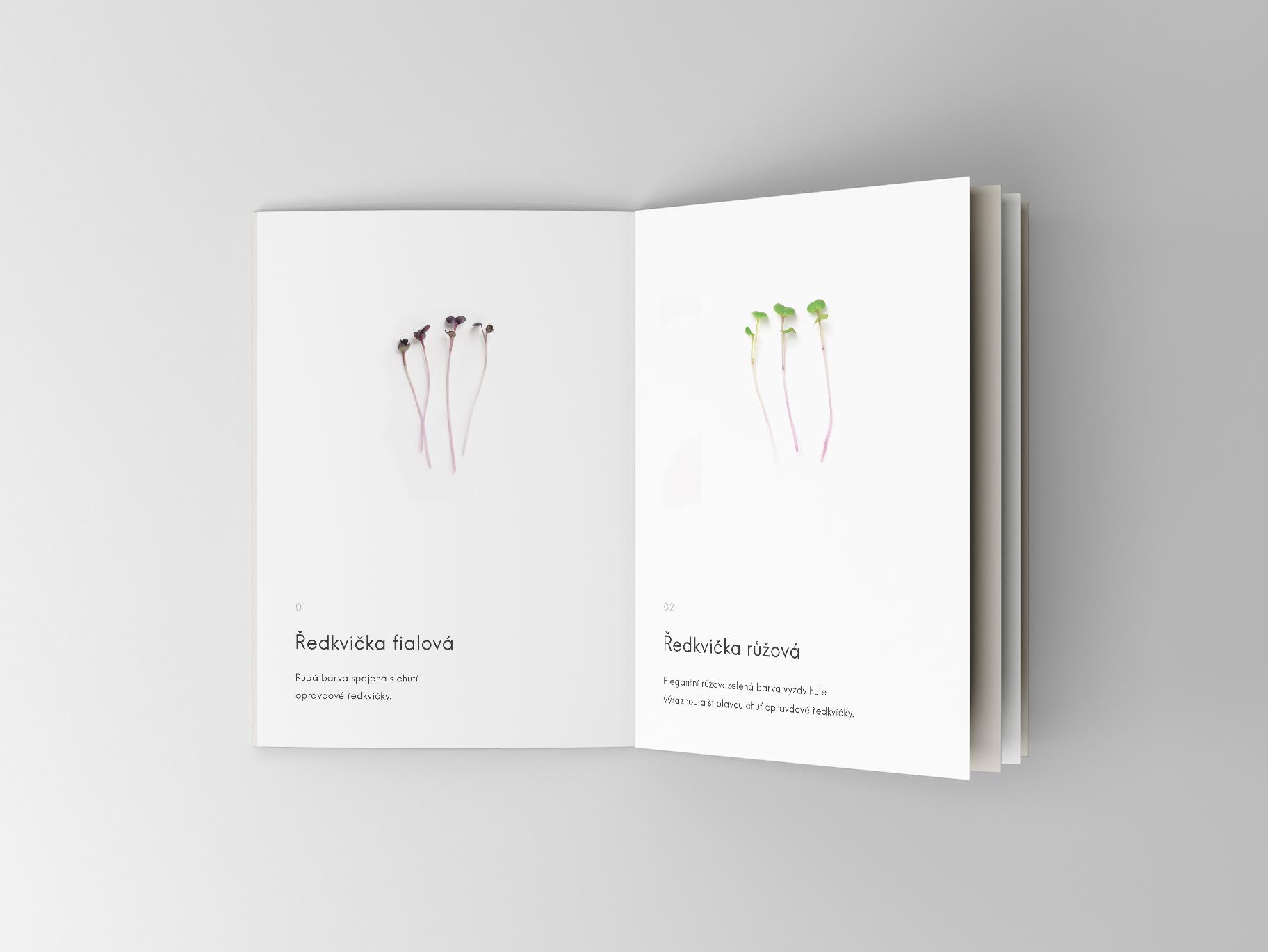 Booklet Mockup BYLINKY